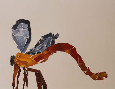 by Heath Seawright, Grade 5